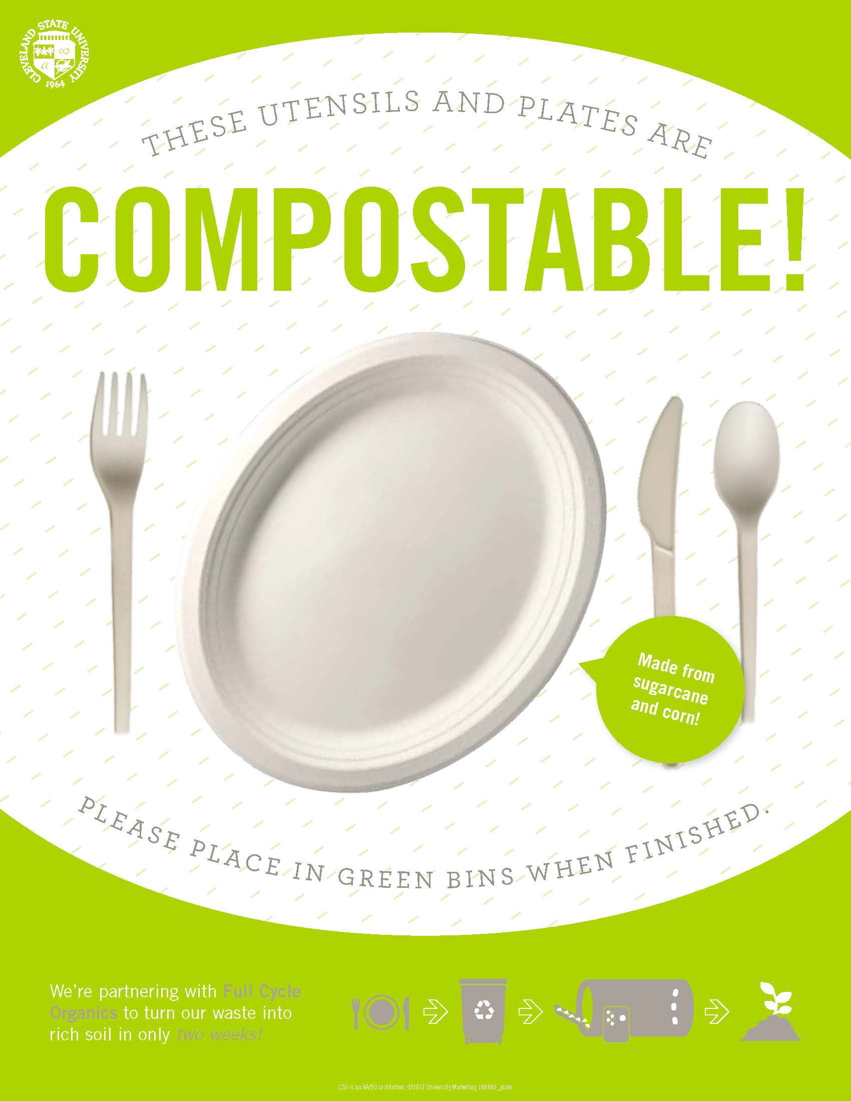 Compostable Plate & Utensils