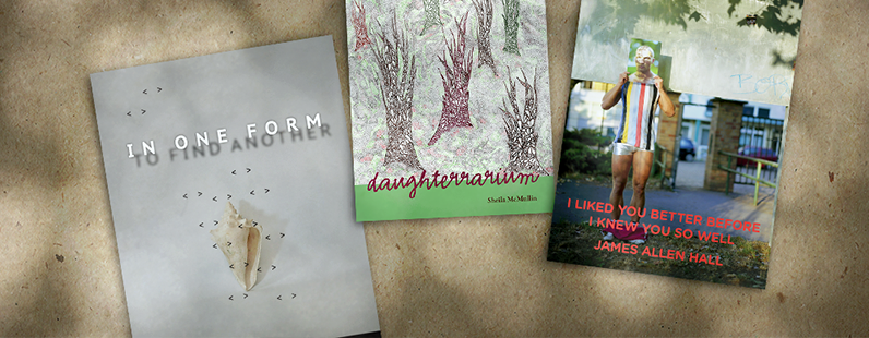2017 poetry publications