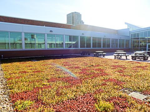 RC Green Roof CSU