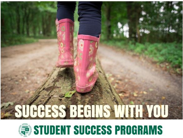 Success Program Banner