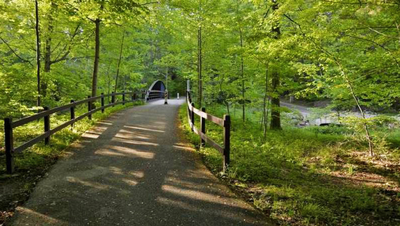 trail in the Cleveland Metroparks