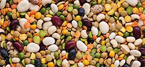 Dried Peas & Beans