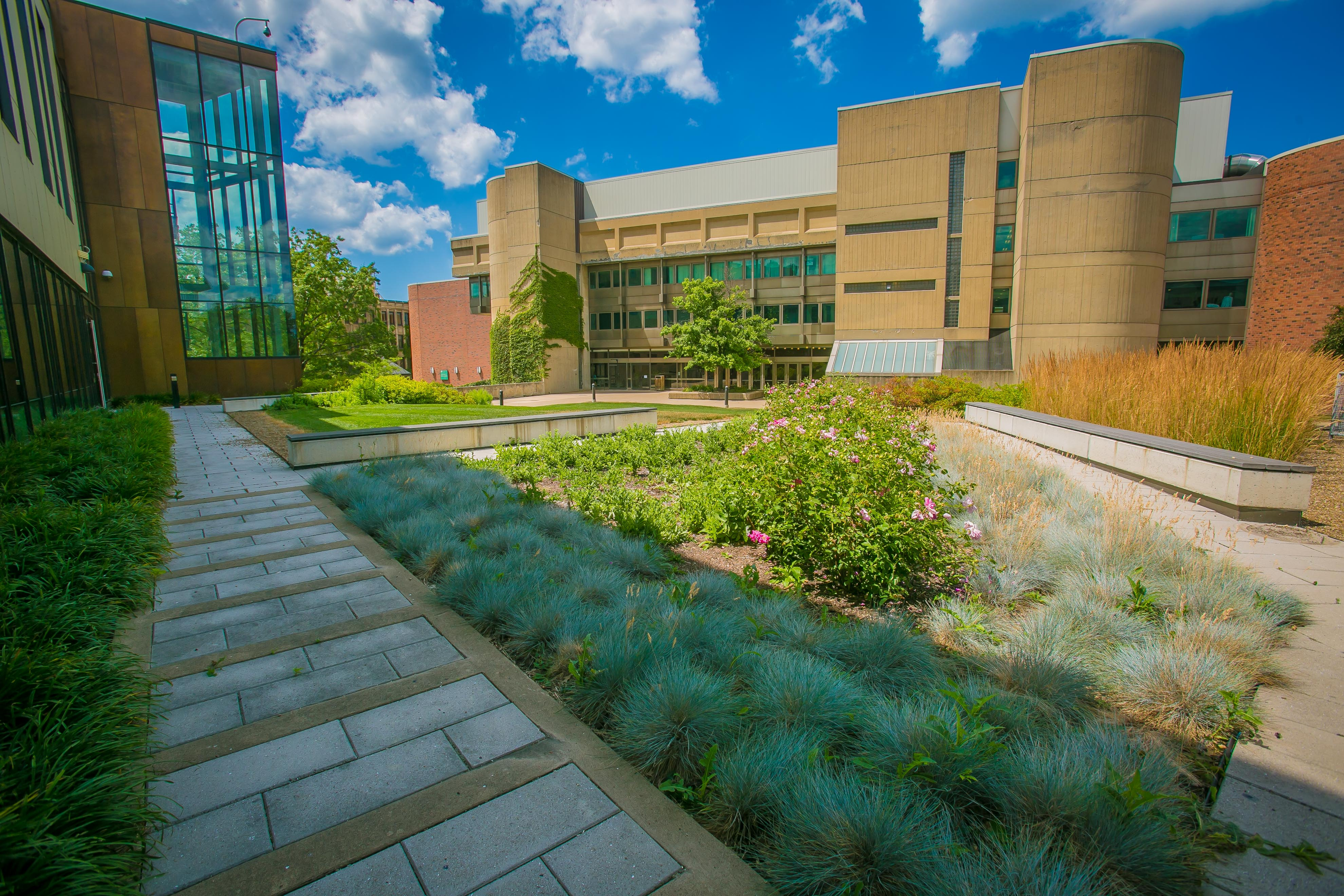 Health Sciences Green Roof