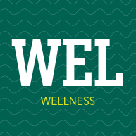 Learn about our wellness services, including massage, personal training and nutrition services!