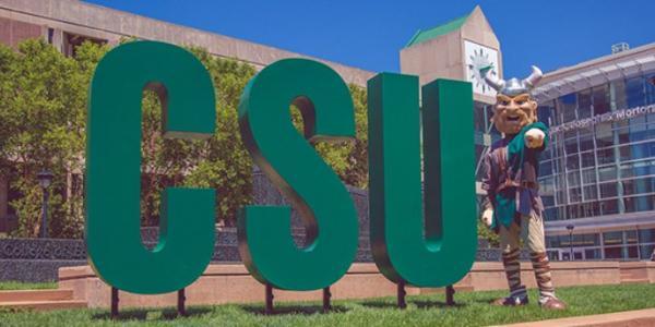 CSU 6