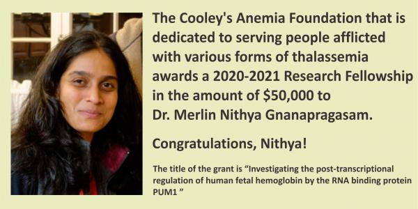 CAF award Nithya