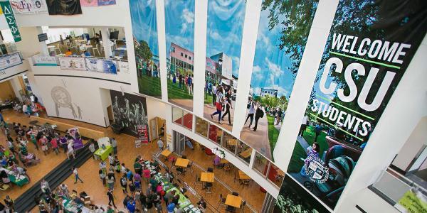 Student Center atrium banners