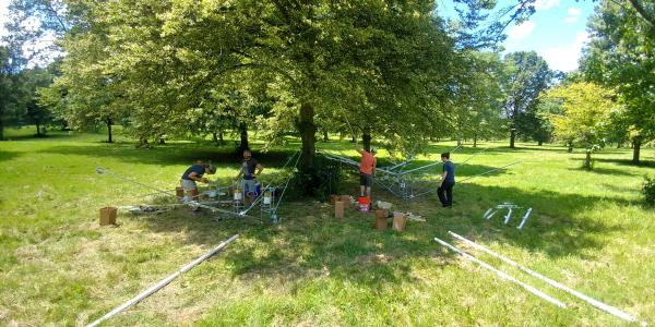 research on rainfall interception by urban trees