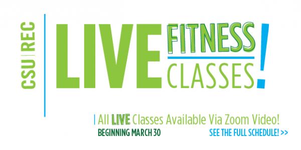 Live Virtual Fitness Classes